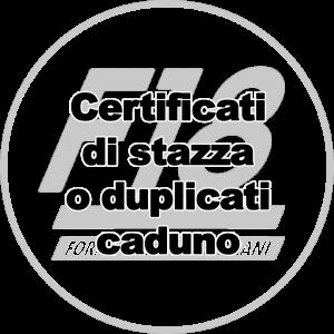 logo-f18_png1024cert_stazza